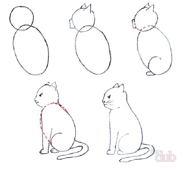 Рисовать котов сидящих